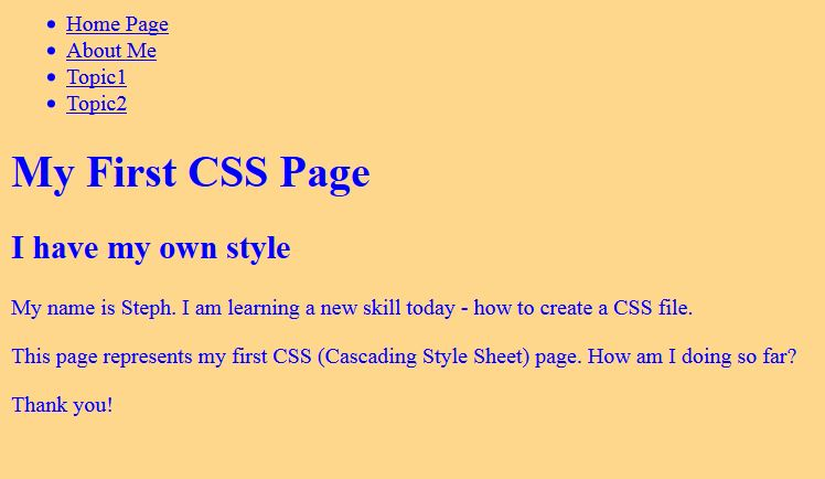 browser view of CSS file